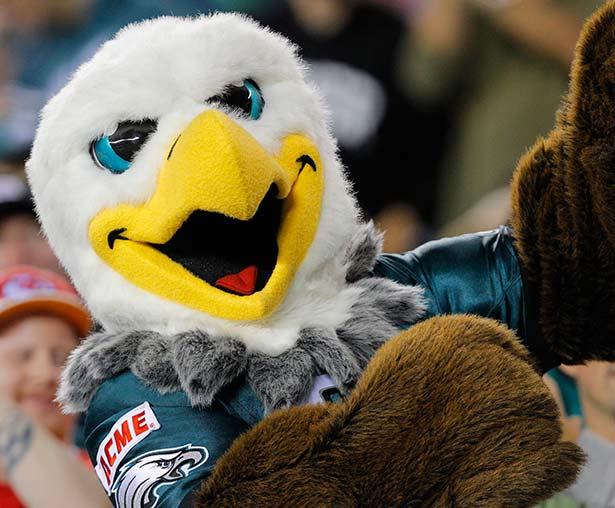 Philadelphia Eagles Mascot Her Sports Corner